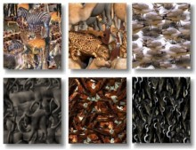 View Texture Pack 1 preview
