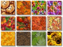 View Texture Pack 3 preview
