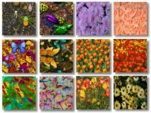 View Texture Pack 4 preview