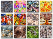 View Texture Pack 6 preview